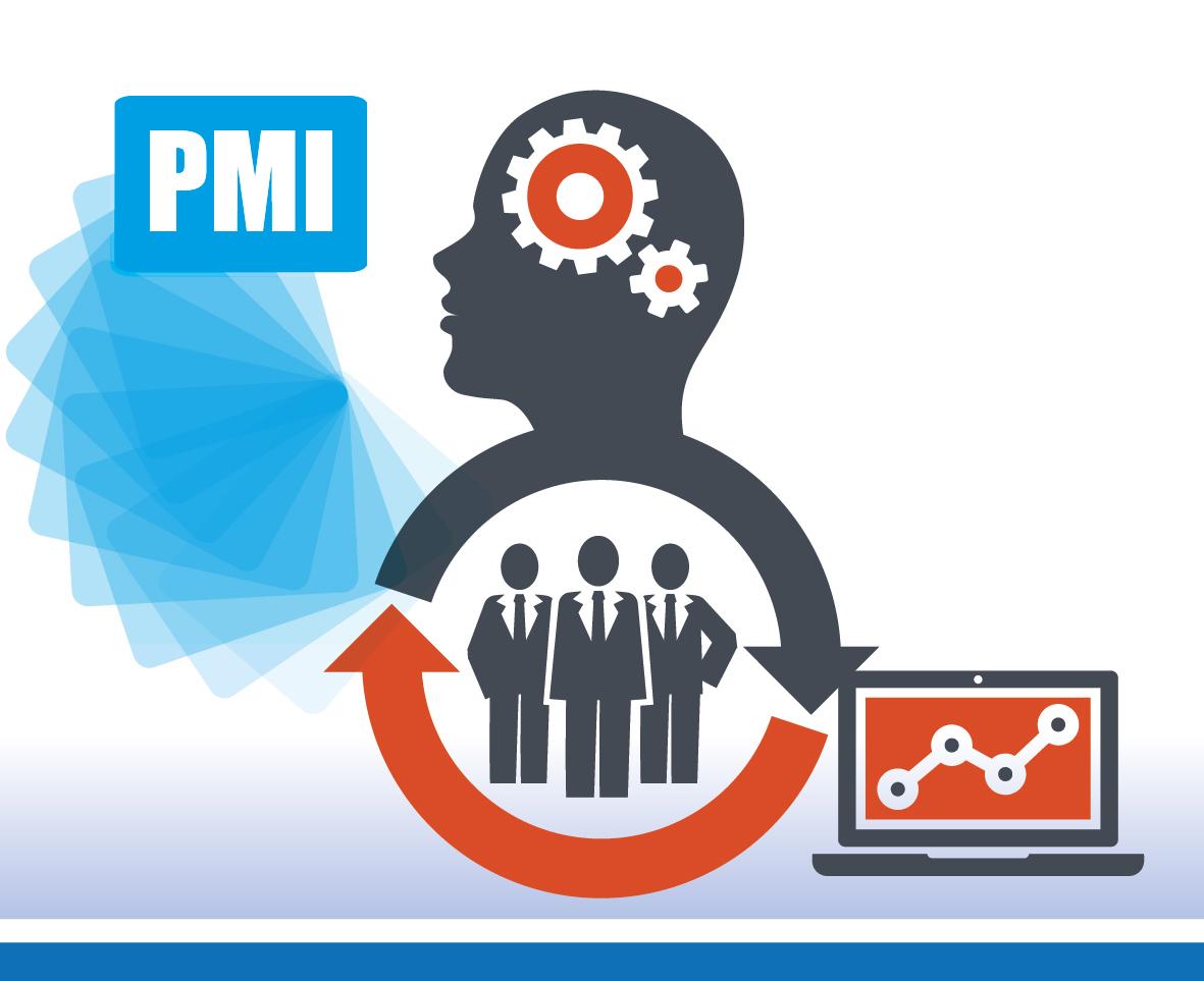 pmi-innovative